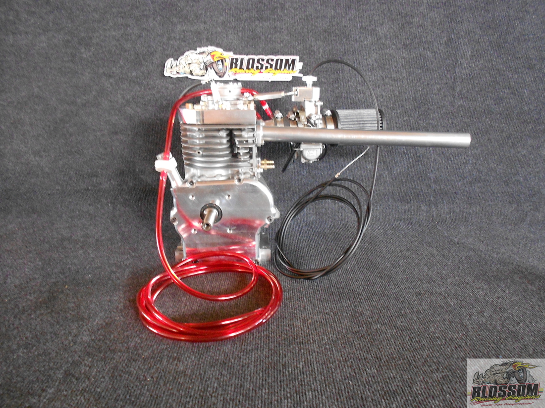 Raptor 11 90 Motor